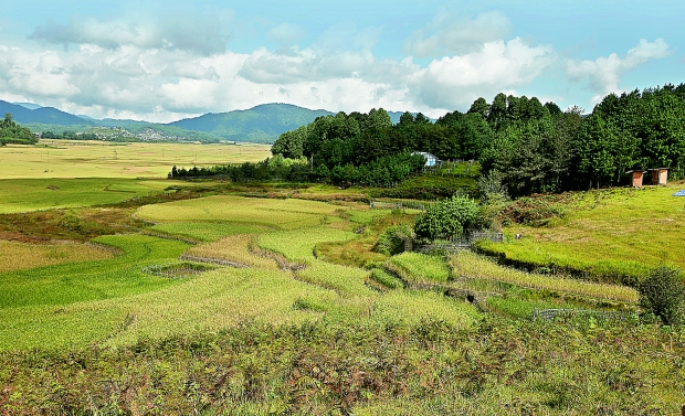 THE CHARISMATIC ZIRO VALLEY OF ARUNACHAL PRADESH