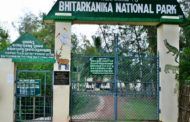 LOOSE YOURSELF IN THE WILDLIFE OF BHITARKANIKA NATIONAL PARK