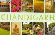HERE ARE 7 BEST PLACES TO VISIT IN CHANDIGARH