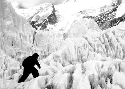 The Mystery of Yeti Sightings In The Himalayas