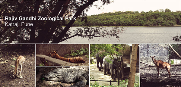 Best Places to visit in Pune - Rajiv Gandhi Zoological Park