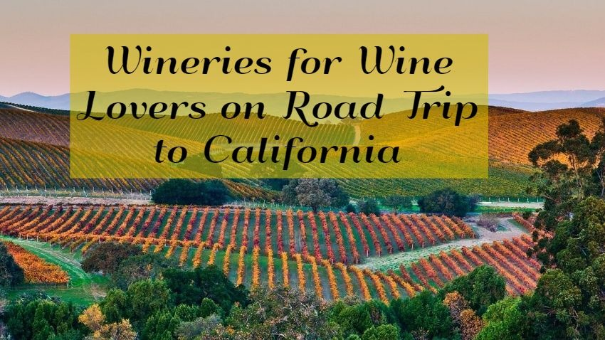 Wineries for Wine Lovers on Road Trip to California