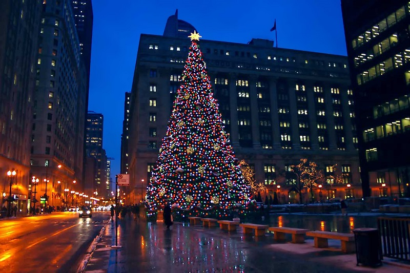 5 Most Gripping Activities to do in Chicago in December