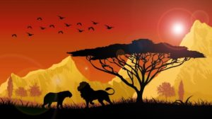 best safaris in India for animal lovers