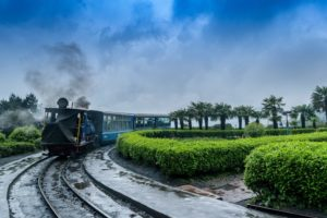 8 most terrific and top things to do in darjeeling