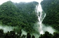 Embark On a Journey of All the Things to Do At Dudhsagar Waterfalls