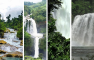 Four splendid waterfalls in the Philippines you couldn't afford to miss!