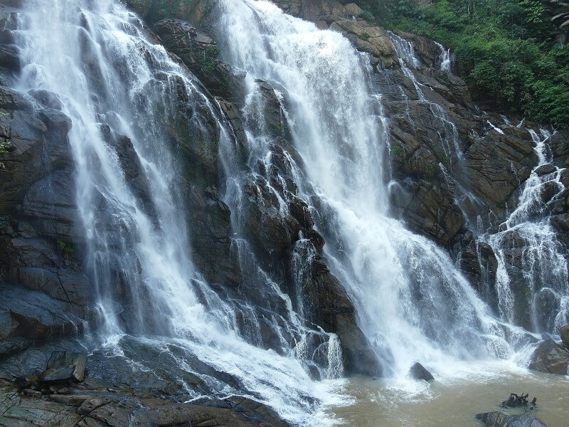 6 Gorgeous Waterfalls in Wayanad to Visit with Family and Friends!