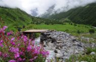 A Guide to Visiting the Valley of Flowers National Park in India
