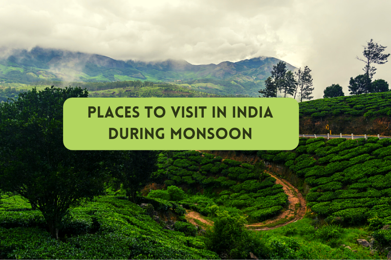 Places to Visit in India during Monsoon: Get Smitten by the Beauty of Rain-Drenched Landscapes